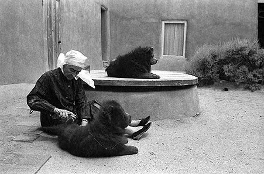 Georgia O'Keeffe Grooms her Dogs by John Loengard, 1966 © John Loengard