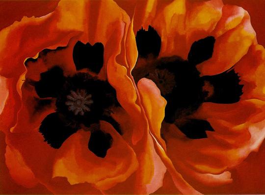 Oriental Poppies - 1928