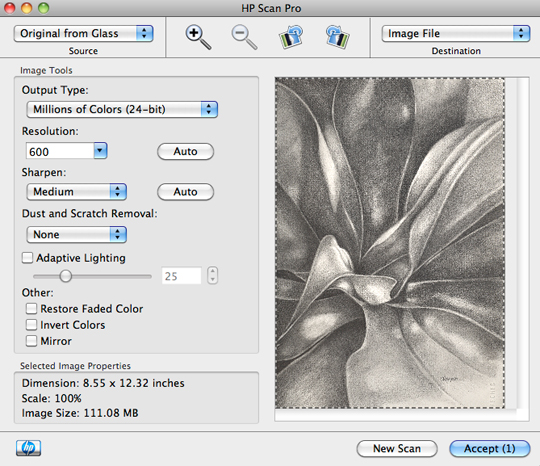 Adjust your scan settings to a resolution at least of 300 and higher for large reproductions of your art.