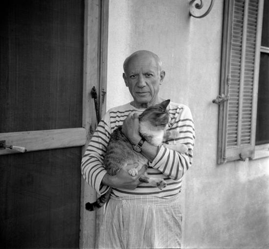 pablo-picasso-cat