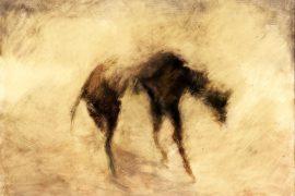 Hunger by John Grech